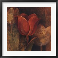 Tulip Reflection Framed Print