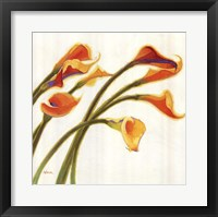 Framed Callas in the Wind I