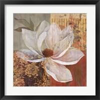 Magnolia Morning I Framed Print