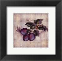 Framed Tartan Fruit-Plum