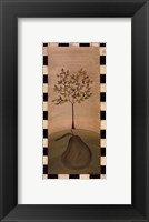 Country Pear Framed Print