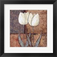 Tulip II Framed Print