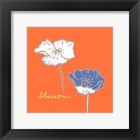 Framed Poppies