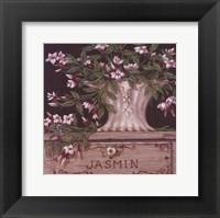 Framed Jasmin