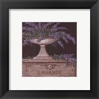 Framed Lavande