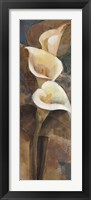 Calla Lily Trio Panel Framed Print