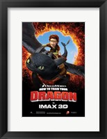 Framed How to Train Your Dragon - Style H