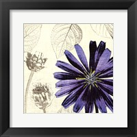 A Touch of Color III Framed Print