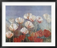 Framed Blushing Poppies