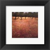 Orchard Framed Print