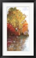 Framed Forest Reflection II