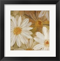Daisy Story Square II Framed Print