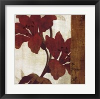 Floral Harmony II Framed Print