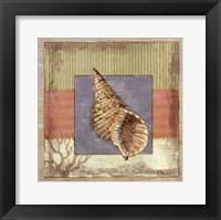 Montego Triton Framed Print