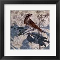 Songbird I Framed Print