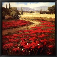 Framed Red Poppy Trail