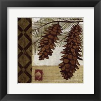 Framed Summer Pine I
