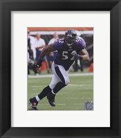 Framed Ray Lewis 2010 Action On The Field