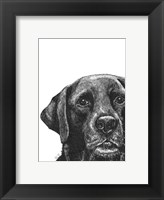 Framed Millie the Black Lab