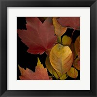 Framed Small Vivid Leaves IV (ST)
