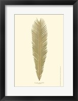 Framed Small Sago Palm I (P)