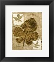 Framed Mini Leaf Collage IV (ST)