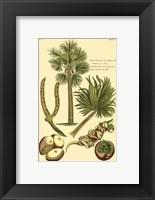 Framed Printed Exotic Palm I
