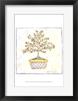 French Topiary II Framed Print