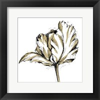 Framed Small Tulip Sketch III