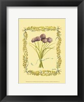 Small Chives Framed Print