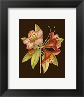 Framed Crimson Blooms I
