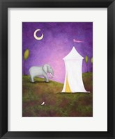 Midnight Rendezvous Framed Print