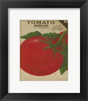 Heirloom Variety V Framed Print