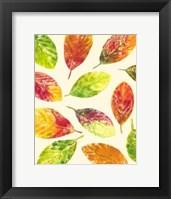 Framed Vibrant Leaves II