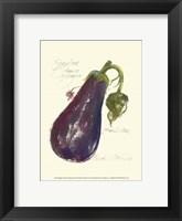 Eggplant Solanum Melongena Framed Print