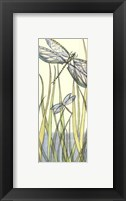 Framed Small Gossamer Dragonflies II (P)