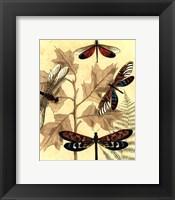 Framed Sm. Graphic Dragonflies I (P)