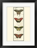 Small Butterfly Prose Panel I Framed Print