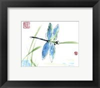 Framed Dragonfly