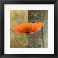 Framed Orange Poppies VI