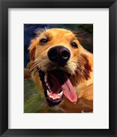 Golden Tongue Framed Print