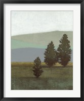 Framed Evergreen II
