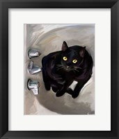 Framed Black Cat Lookin'