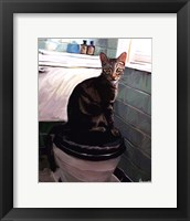 Gray Tiger Cat on the Toilet Framed Print
