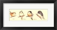 Framed Life of a Songbird III