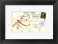 Framed Postcard Dragonfly IV