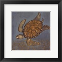 Sea Turtle II Framed Print