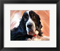 Framed Springer