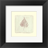 Leaf Impression lll Framed Print