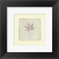 Leaf Impression ll Framed Print